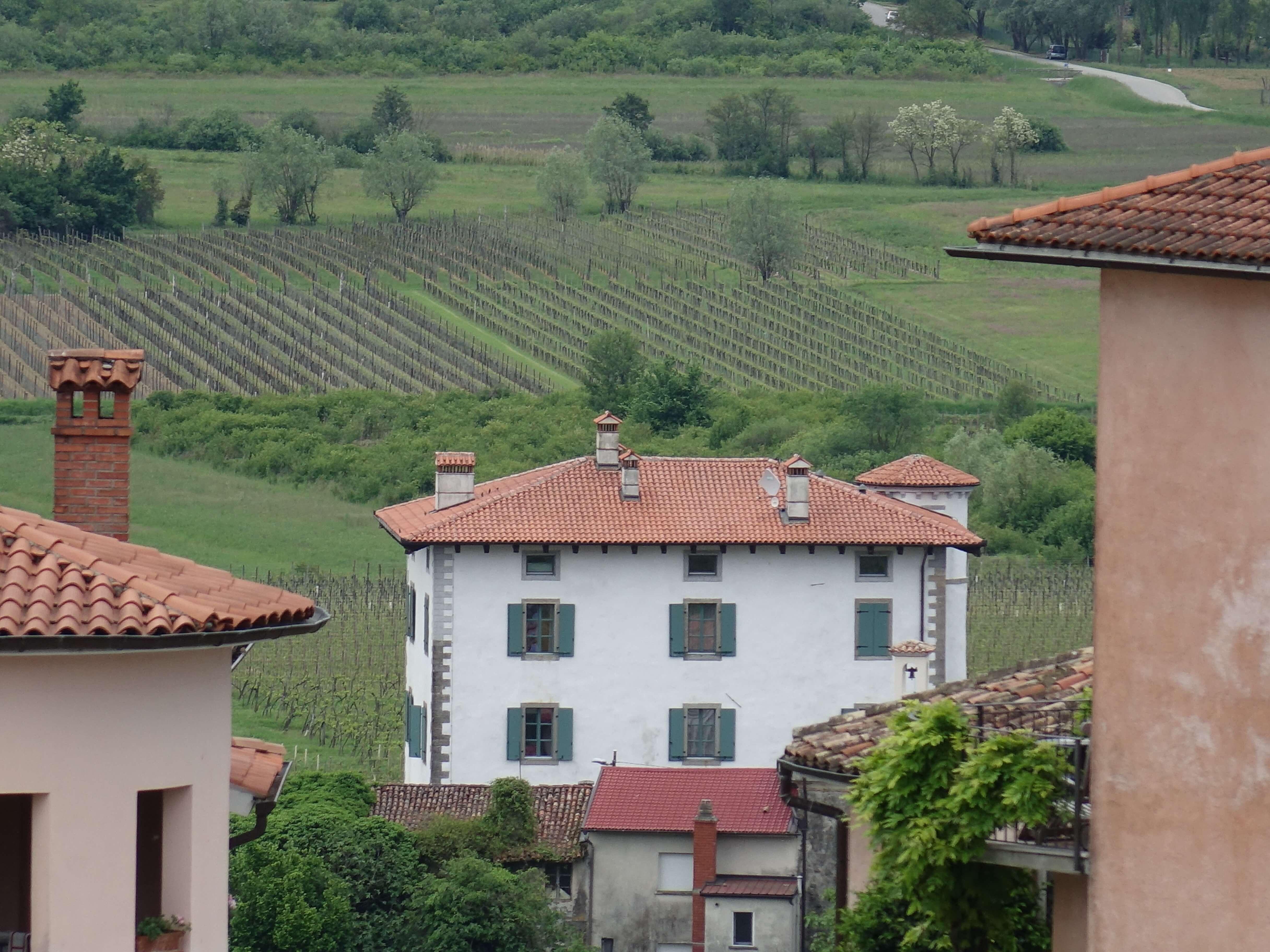 Bauernhaus vor Weinbergen